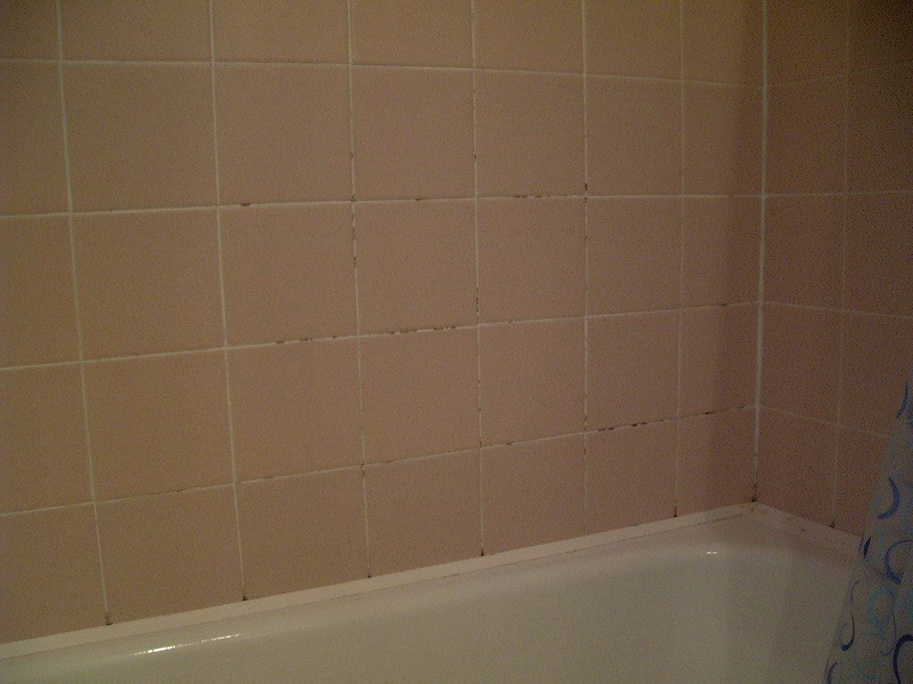 mould removal in bathrooms