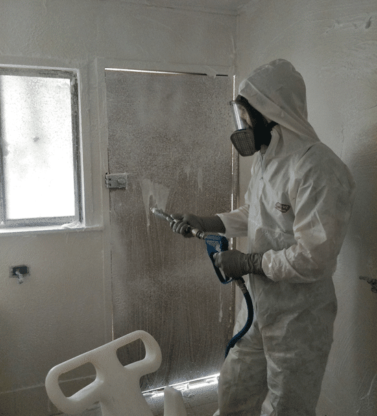 Mould Removal Professional Service in Bathrooms