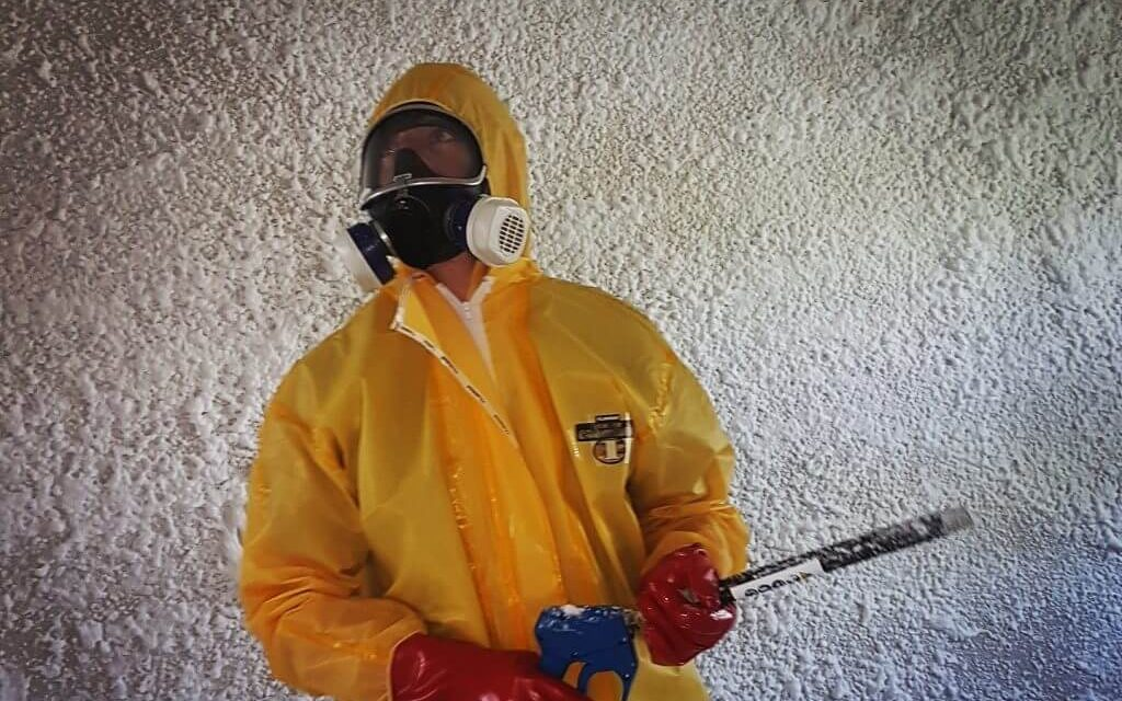 Mould Removal Process