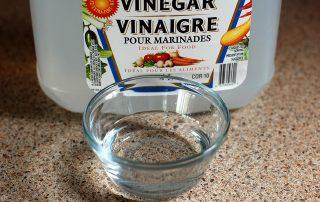 Can Vinegar Kill Mould?